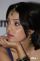 Lekha Washington at Kalyana Samayal Saadham Pressmeet (28)