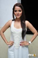 Priyanka Chabra at Athadu Aame O Scooter Press Meet (15)