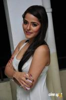 Priyanka Chabra at Athadu Aame O Scooter Press Meet (22)