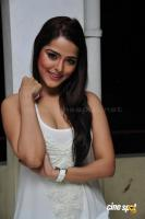 Priyanka Chabra at Athadu Aame O Scooter Press Meet (24)