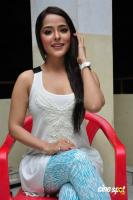 Priyanka Chabra at Athadu Aame O Scooter Press Meet (28)