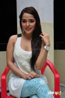Priyanka Chabra at Athadu Aame O Scooter Press Meet (32)