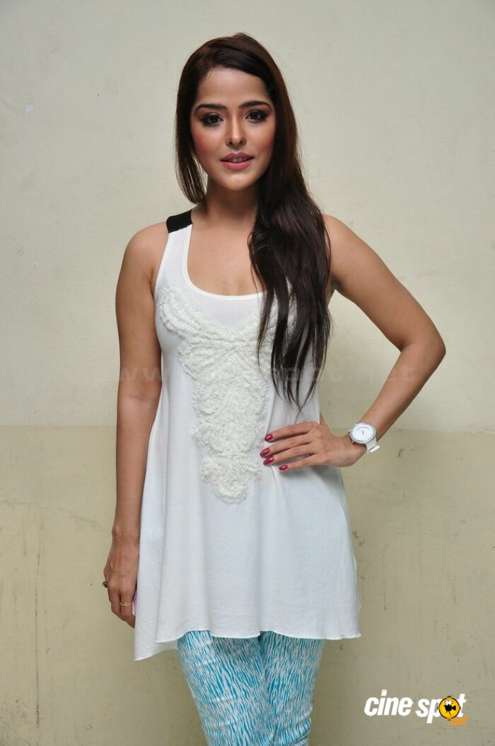 Priyanka Chabra at Athadu Aame O Scooter Press Meet (51)
