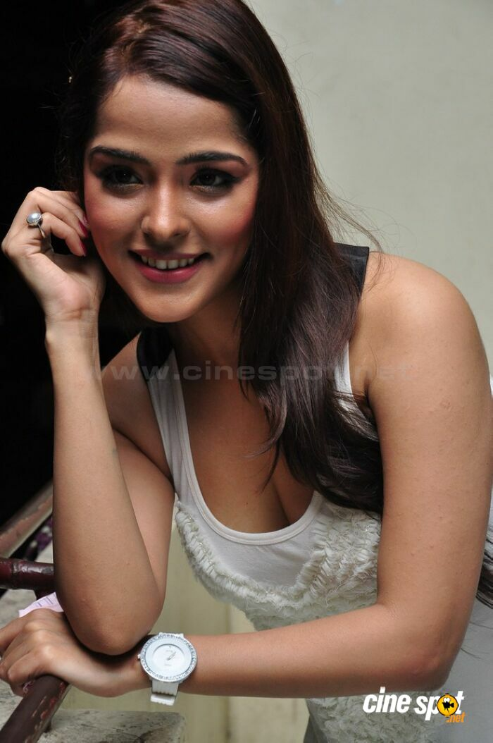 Priyanka Chabra at Athadu Aame O Scooter Press Meet (52)