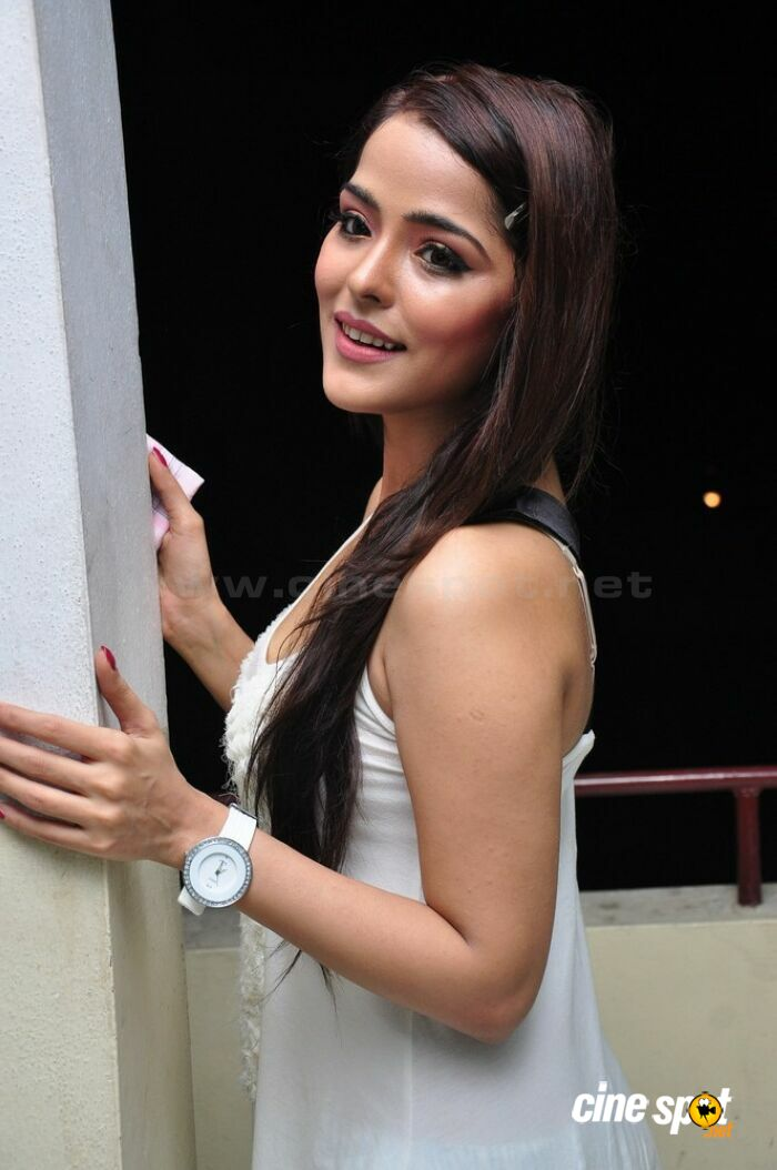 Priyanka Chabra at Athadu Aame O Scooter Press Meet (9)