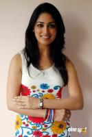 Yami Gautam New Hot Stills (23)