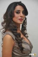 Mahi Gill Latest Stills (14)
