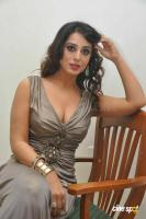 Mahi Gill Latest Stills (15)