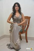 Mahi Gill Latest Stills (35)