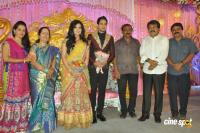 Bharath wedding reception photos (27)