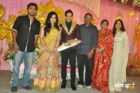 Bharath wedding reception photos (3)