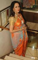Hema Malini Latest Saree Photos (1)