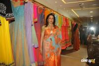Hema Malini Latest Saree Photos (7)