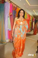 Hema Malini New Saree Stills (2)