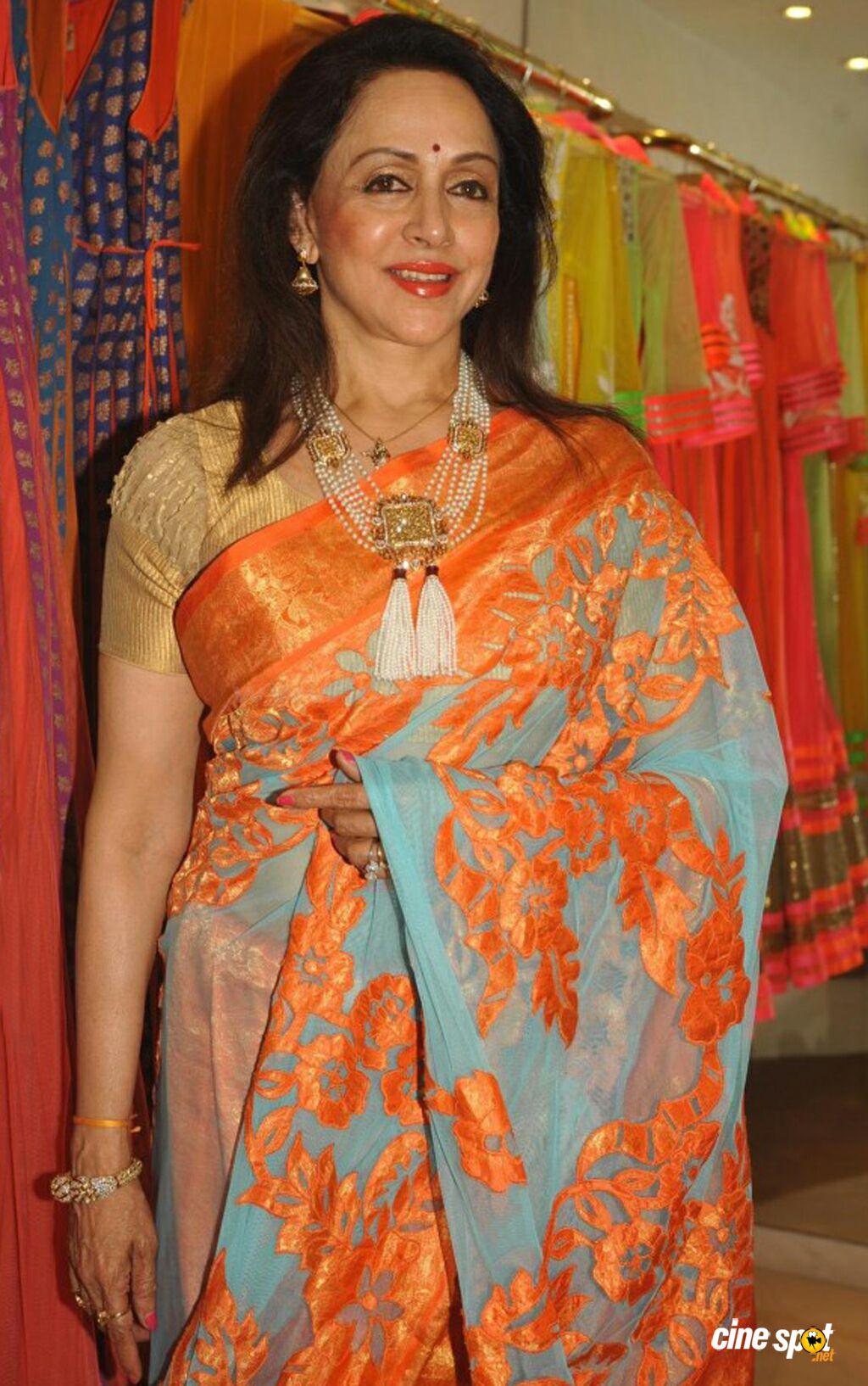 Hema Malini New Saree Stills (5)