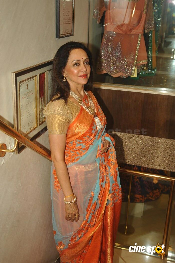 Hema Malini New Saree Stills (9)