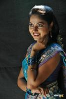 Suhasini New Saree Photos (6)