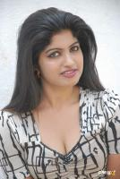 Neniya Kannada Actress Photos