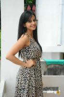 Rakul Preet Singh New Photos (4)