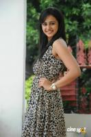Rakul Preet Singh New Photos (42)