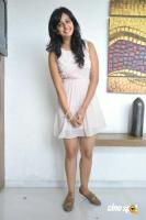 Rakul Preet Singh at Venkatadri Express Success Meet (10)