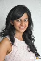 Rakul Preet Singh at Venkatadri Express Success Meet (12)