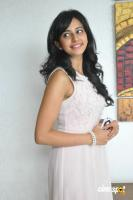 Rakul Preet Singh at Venkatadri Express Success Meet (14)