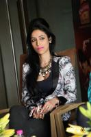 Shivali Singh at Kingfisher Ultra Hyderabad International Fashion Week (12)