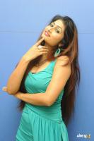 Swapna Latest Hot Images (56)
