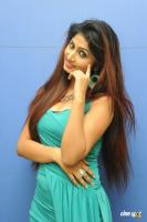 Swapna Latest Hot Images (57)