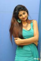 Swapna Latest Hot Images (58)