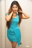 Swapna Latest Hot Images (6)