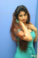 Swapna Latest Hot Images (60)