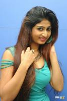 Swapna Latest Hot Images (63)