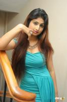 Swapna Latest Hot Images (64)