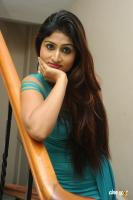 Swapna Latest Hot Images (65)