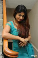 Swapna Latest Hot Images (66)