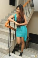 Swapna Latest Hot Images (67)