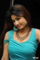 Swapna Latest Hot Images (69)