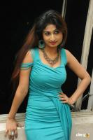 Swapna Latest Hot Images (70)
