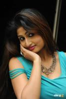 Swapna Latest Hot Images (71)
