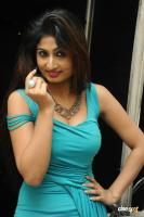 Swapna Latest Hot Images (72)