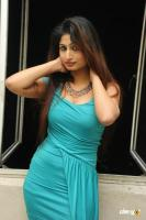 Swapna Latest Hot Images (75)