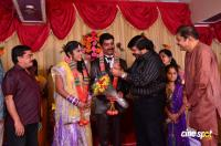 Pro VP Mani 2nd Daughter Wedding Reception (1)