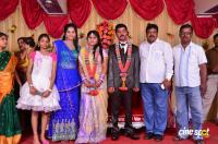 Pro VP Mani 2nd Daughter Wedding Reception (29)
