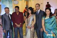 Lakshmi Ramakrishnan's Daughter Wedding Reception Photos (54)