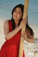 Yami Gautham actress photos (31)