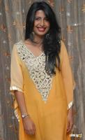 Rajshree Kannada Actress Photos