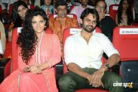 Rey Movie Audio Launch Photos