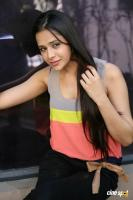 Krutika Singhaal Latest Photos (37)